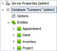 DBMS database management system: DBMS Entities